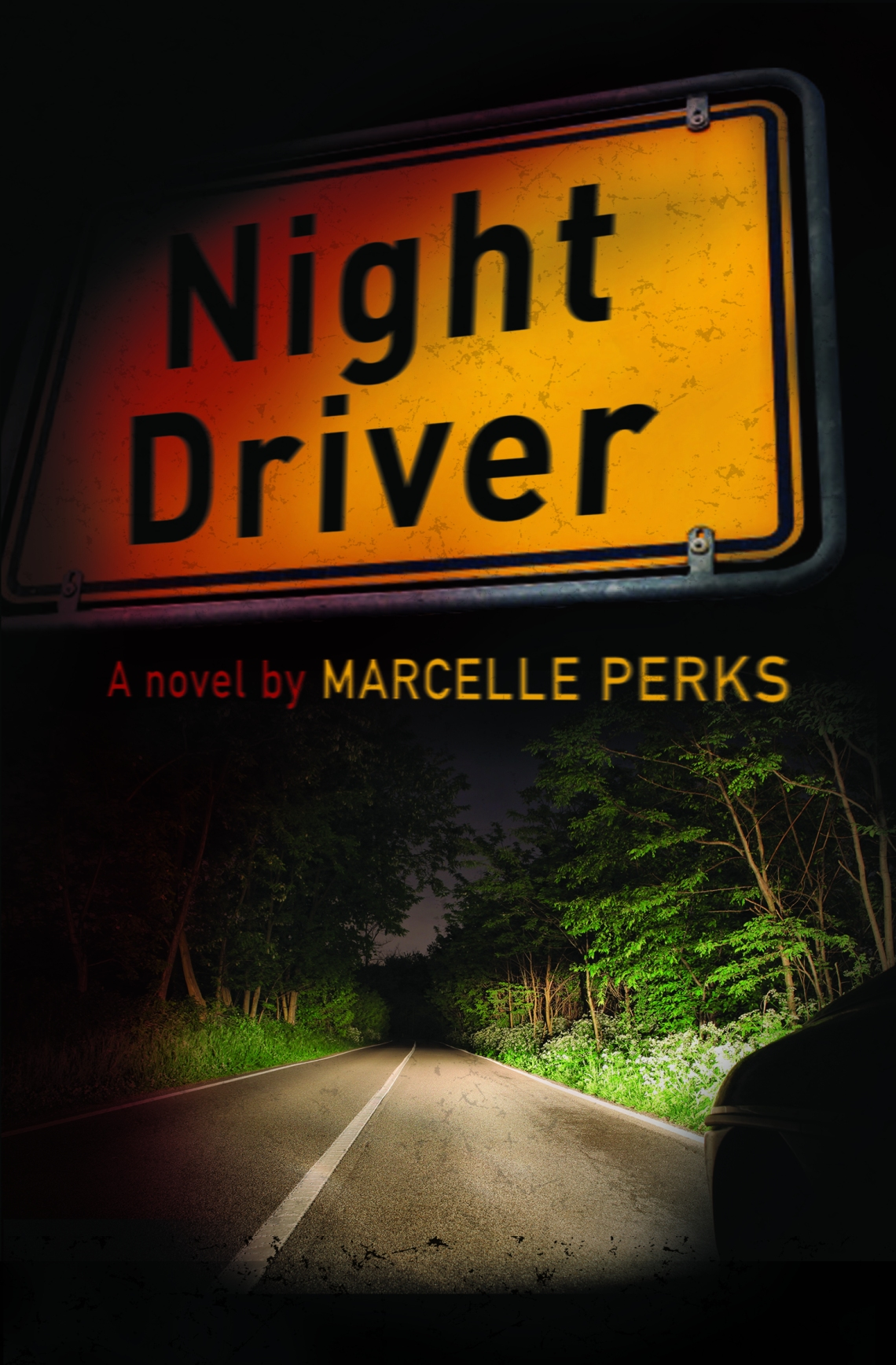 Night Driver by Marcelle Perks